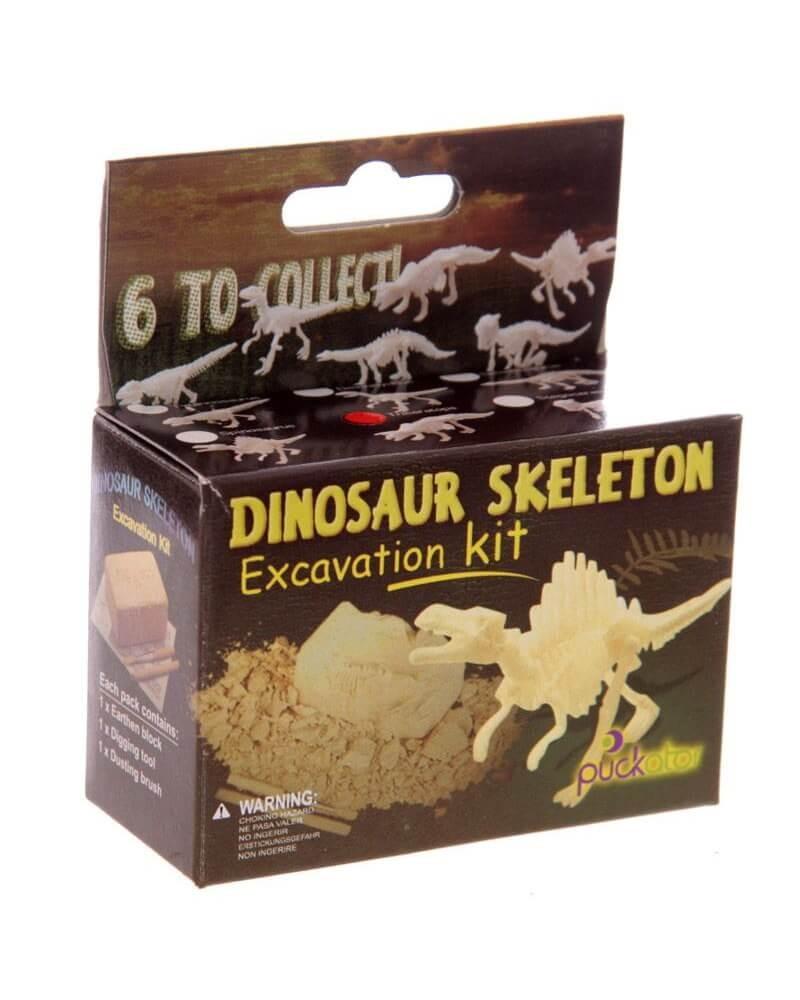 Kit-Archeologo-Scheletro-di-Dinosauro-in-miniatura-old-skull-seregno