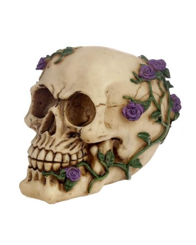 teschio-con-rose-viola-old-skull-seregno