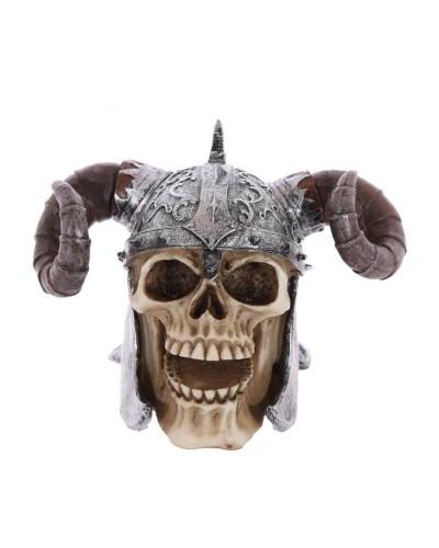 teschio-vichingo-old-skull-seregno